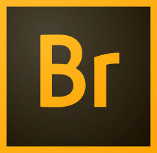 Adobe Bridge CC free offline installer  download
