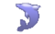 SQLyog Community Edition icon