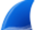 Wireshark for Mac icon