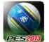 Pro Evolution Soccer - PES 2013 icon
