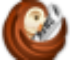 RSSOwl icon